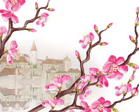 Cherries. Water-colour illustration   of a spring cherries with  castle on the background Stock Image