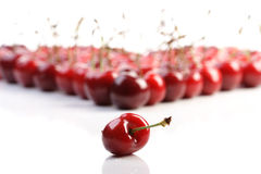 Cherries. Bunch of cherries on white background Stock Photos