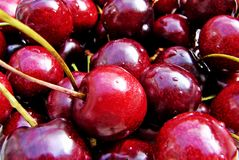 Cherries. Shot of fresh harvested cherries royalty free stock photo