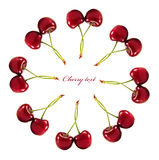Cherries. Range of ripe cherries to your design. isolated on a white background Stock Image
