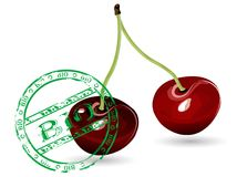 Cherries. Fresh cherries with bio stamp vector illustration