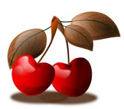 Cherries. Illustration representing a couple of  cherries with leaves Royalty Free Stock Image