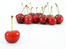 Cherries. On white Royalty Free Stock Image