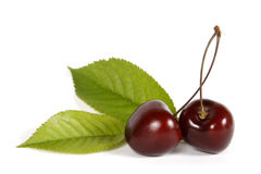 Free Cherries Stock Image - 24206901