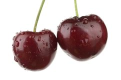 Cherries. Stock Image