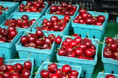 Cherries. Fresh red cherries for sale in the market Stock Image