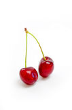 Cherries. Two cherries on white background Royalty Free Stock Image