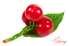 Cherries. Three cherries woven into a braid. isolated on a white background Royalty Free Stock Photography