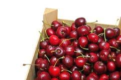 Cherries. Stock Image