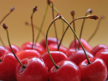 Cherries. Closeup Royalty Free Stock Images