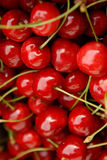 Cherries. The ripe and red cherries Stock Photo