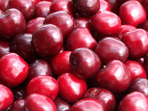 Cherries. Closeup of fresh picked cherries royalty free stock images