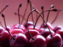 Free Cherries Stock Images - 516734