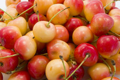 Cherries. Background of some cherries iolated Royalty Free Stock Image