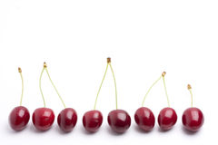 Cherries. Row of red cherries on white background Royalty Free Stock Image