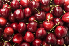 Free Cherries Royalty Free Stock Photography - 5721317