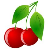 Cherries. Isolated on white background Stock Image