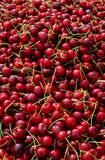 Cherries. Beautiful red cherries on a market Stock Image