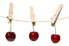 Free Cherries Royalty Free Stock Photography - 961517