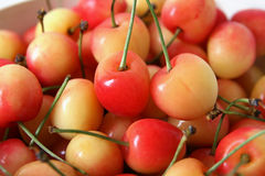 Cherries Stock Image