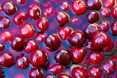 Cherries. Bing cherries floating in water Royalty Free Stock Photos