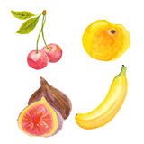 Cherries, apricot, figs and banana Royalty Free Stock Photos