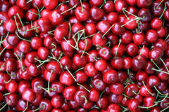 Cherries background Royalty Free Stock Image
