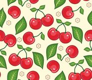 Cherries background Stock Photo