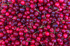 Cherries background. Cheries at the Farmers Market royalty free stock images