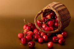 Cherries in a basket on a gold background. Royalty Free Stock Image