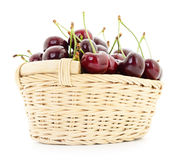 Cherries in basket. Royalty Free Stock Images