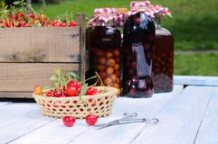 Cherries. Stock Photo