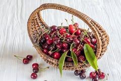 Cherries in basket Royalty Free Stock Photo