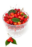 Cherries in a beautiful glass dish Stock Photos