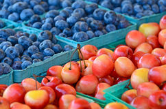 cherries and blueberries in cartons Stock Images
