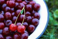 Cherries in the Bowl. Royalty Free Stock Photos