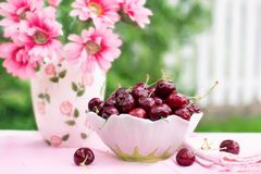 Cherries In A Bowl, Fruit, Summer Royalty Free Stock Images