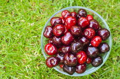 Cherries in bowl on grass. Background Royalty Free Stock Image
