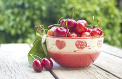 Cherries in a bowl on old wood Royalty Free Stock Images