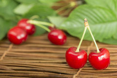 Cherries and branch with leaves Stock Image