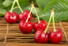 Cherries and branch with leaves Royalty Free Stock Image