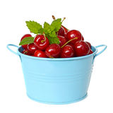 Cherries in the bucket Royalty Free Stock Photos