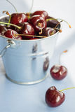 Cherries in a Bucket Royalty Free Stock Photo