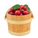 Cherries in a bucket Royalty Free Stock Photography
