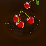 Cherries with Chocolate. Illustration of Cherries Falling into molton Chocolate Royalty Free Stock Photos