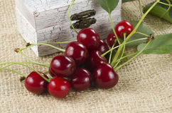 Cherries close-up Royalty Free Stock Images