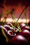 Cherries close up in wooden box. Cherries group close up in a wooden box on dark background Stock Image