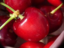 Cherries closeup Royalty Free Stock Images