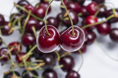 Cherries. Closeup shot of two cherries in studio Royalty Free Stock Images