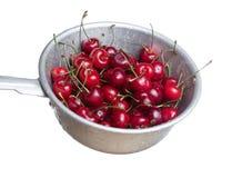Cherries in colander Royalty Free Stock Image
